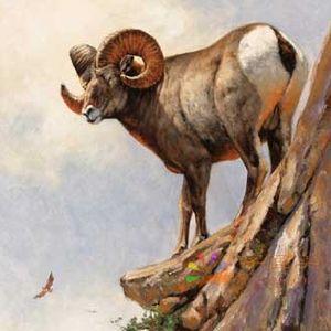博物馆动物油画